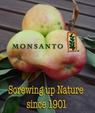 Monsanto#3